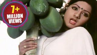 Download Padaharella Vayasu Songs - Sirimalle Puvva - Sridevi Video