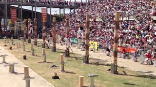 Download World Tree Felling Championship Final Video