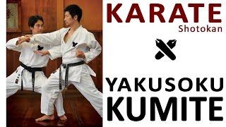 Download YAKUSOKU KUMITE - KEIO Video