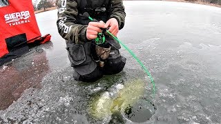 Download Catching His BIGGEST Bass EVER!!! (Crazy Clear Ice) Video