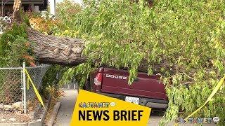Download Wind's wrath in South Okanagan Video