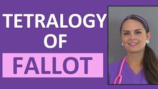Download Tetralogy of Fallot Nursing NCLEX | Congenital Heart Disease Defects Video