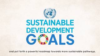 Download Presentation of the UNDP World Centre for Sustainable Development (RIO+ Centre) Video