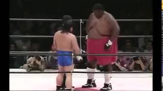 Download MMA Fighter vs Sumo Video