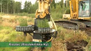 Download Trồng rừng cơ giới tại nước ngoài Video