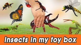 Download [EN] #57 Insects in my toy box! kids education, Dinosaurs animationㅣCoCosToy Video