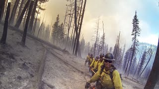 Download Stunning GoPro Footage From the Front Lines of Wildfire Video