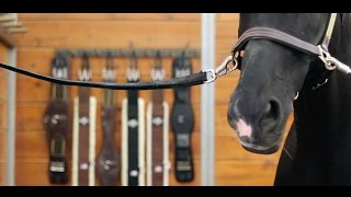 Download Eventing - A Story of Horse & Rider Video