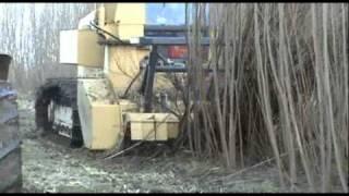 Download BR600 biomass harvester Video