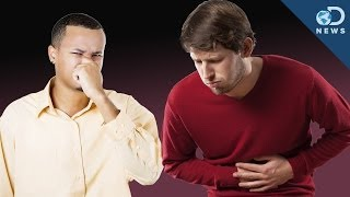 Download Is It Dangerous To Hold In Your Farts? Video