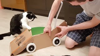 Download Daddy built a BATMOBILE for his cat Video