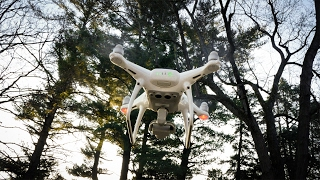Download Watch This Before You Buy the DJI Phantom 4 Pro - Hands on Review Video