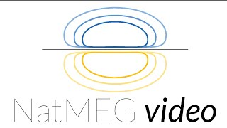 Download NatMEG lecture: Introduction to MEG (vs EEG) instrumentation by Stephen Whitmarsh Video