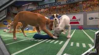Download Puppy Bowl IX: A Year of Excessive Cuteness   Puppy Bowl IX Video