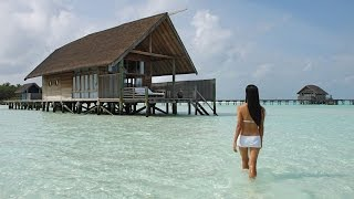 Download Top 5 Hotels in Maldives Video