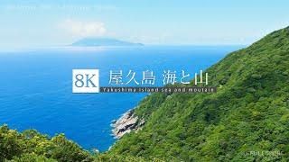Download [8K footage] Yakushima island sea and mountain [屋久島 vol.1 海と山 8K] Video