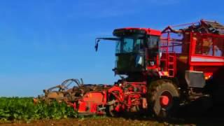 Download Südzucker - Von der Rübe zum Zucker Video