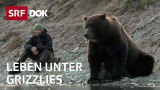 Download Mit Bärenforscher David Bittner in Alaska | Leben unter Bären | Doku | SRF DOK Video