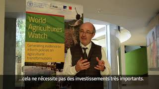 Download Interview with Pierre Marie Bosc, Coordinator of the World Agricultures Watch Initiative Video