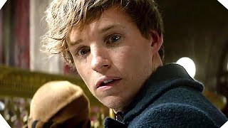 Download Fantastic Beasts and Where to Find Them TRAILER # 2 (Harry Potter Spinoff) Video