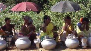 Download South Indian Street Foods Rice wine -Downoor village market - Oldest Drink -Vizag dist, AP India Video