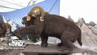 Download Ice Age Mammals at Blank Park Zoo Through June 10 Video