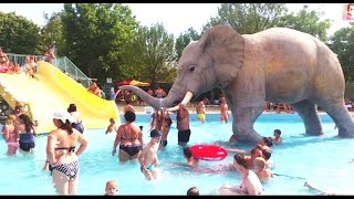 Download Slides for kids in water park with big elephant. Funny video from KIDS TOYS CHANNEL Video