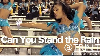Download Can You Stand the Rain - Southern University Band & Dancing Dolls (2014) | SU vs TxSU Video