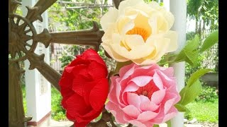 Download Peony with crepe paper - Craft Tutorial Video