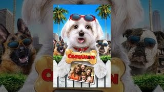 Download Cinnamon Video