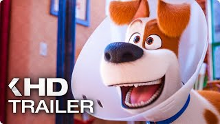 Download THE SECRET LIFE OF PETS 2 - The Rooster Trailer (2019) Video
