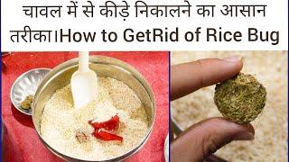 Download चावल को कीड़ो से बचाने के लिए ये तरीका अपनाएँ।How to kill and prevent Rice Bugs? Video