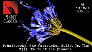 Download Tchaikovsky: The Nutcracker Suite, Op. 71a: VIII. Waltz of the Flowers Video