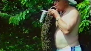 Download Karl Jenter - The Progress in the Queen Bee Breeding (Der Fortschritt in der Königinnenzucht) Video