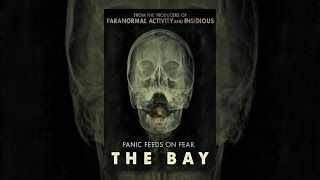 Download The Bay Video