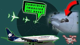 Download AEROMEXICO BOEING B738 IS HIT BY A DRONE while landing at Tijuana! Video
