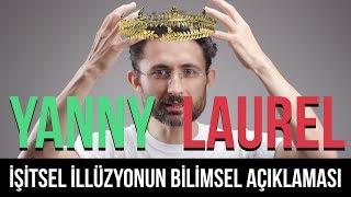 Download Laurel mi duyuyorsunuz Yanny mi? İşitsel illüzyonun bilimsel açıklaması Video