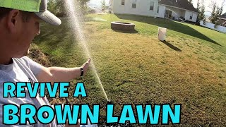 Download HOW TO REVIVE A BROWN DRY LAWN Video