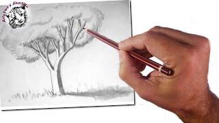 Download Cómo Enseñar a Dibujar a Niños: Un Árbol Realista: Técnicas de Dibujo Fácil Video