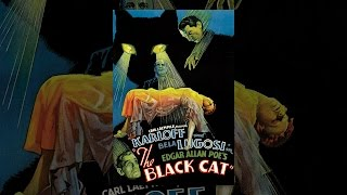 Download The Black Cat Video