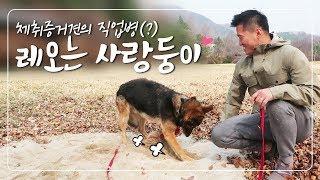 Download [Eng sub] '레오는 사랑둥이' (전직)경찰견의 직업병일까??? Video