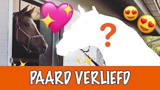 Download OP WIE IS EVE VERLIEFD? | PaardenpraatTV Video
