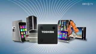 Download Flash Nand Technology from Toshiba & EBV Video
