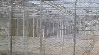 Download WALMART CONSPIRACY EXPOSED(2017) Video