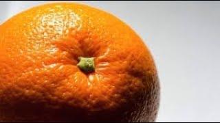 Download عبيد العوني البرتقال مجاني مزرعة سعد الخثلان برتقال الصحراء Video