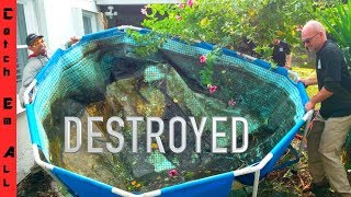 Download DESTROYED my FISH POOL POND! Video