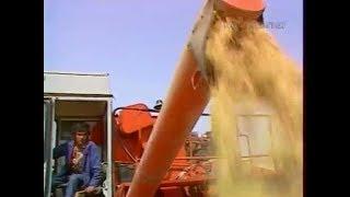 Download 1988 год. Уборка хлеба в Узбекской ССР. Video