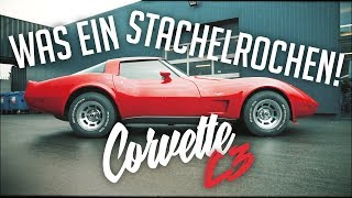 Download JP Performance - Was ein Stachelrochen! | Chevrolet Corvette C3 Video