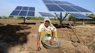 Download Why WTO Ruled against India in solar power dispute? Explained Video