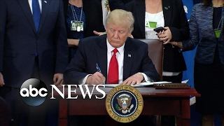 Download Trump's first 100 days: Building the Mexico border wall Video
